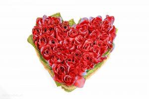 Heart-20151122-7975